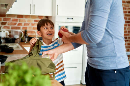 Happy boy with father packing healthy food lunch boxes