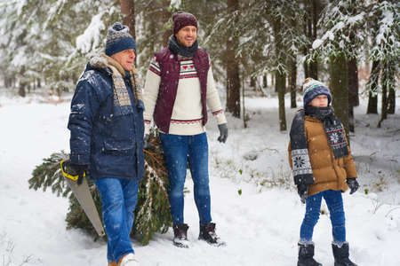 Three generation of family looking for perfect Christmas tree 스톡 콘텐츠