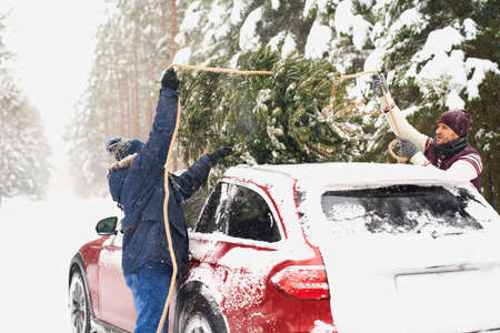Man with senior father packing Christmas tree on car