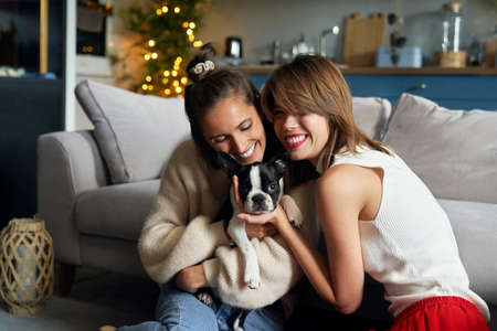 Two women hugging a puppy dog 스톡 콘텐츠