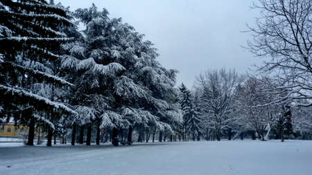 onion valley: Winter Park