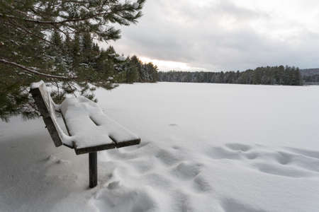 Winter scene in a park with a snow covered bench in the foreground Stock Photo - 53395260