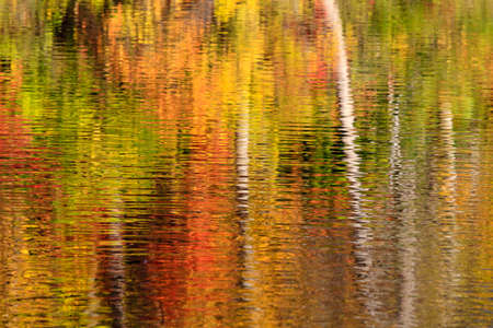 rideau canal: Abstract of fall colour reflections in the Ottawa Rideau Canal