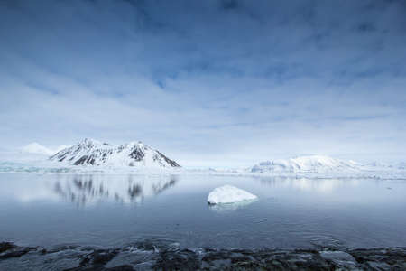 arctic: Arctic spring in south Spitsbergen
