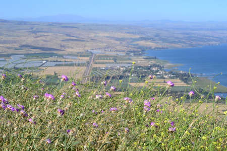 Hiking Jesus trail - beautiful view of Mt. Arbel in countryside of Galilee, Sea of Galilee, Israel 版權商用圖片