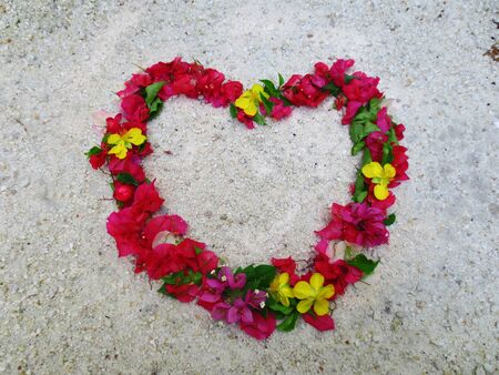 bougainvillea flowers: Bougainvillea flowers heart on the sand Stock Photo
