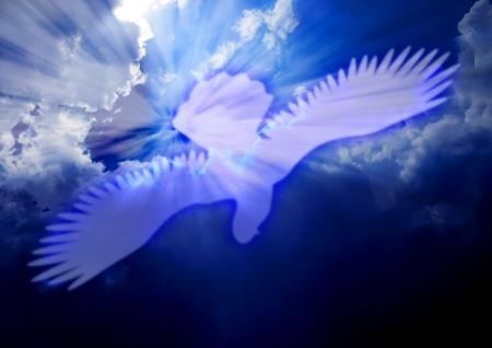 聖霊の鳩 写真素材