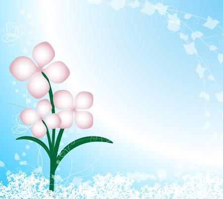 flowers background: Fondo de flores