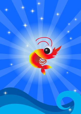 krill: Funny shrimp