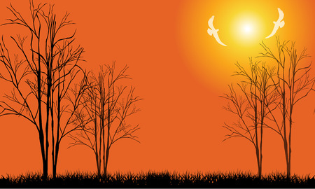 birds in tree: Illustration of tree silhouette and birds in sunset