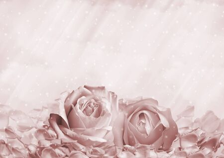 Romantic background with roses and petals with space for text
