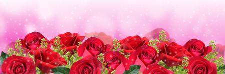 rosas rojas: Rosas rojas en el fondo de color rosa con espacio para el texto