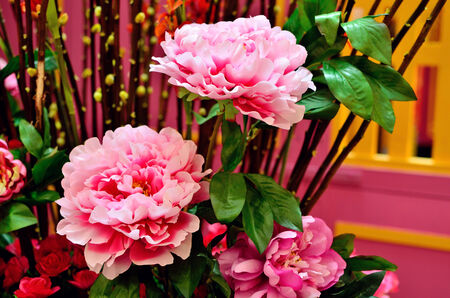 Pink Peony decorating for Chinese New year