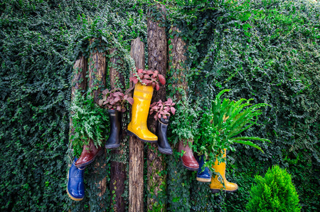 repurpose: Colourful boots with plants Stock Photo