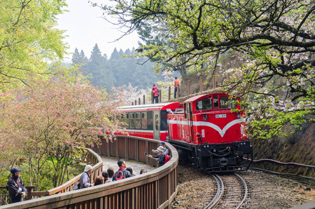Alishan,Taiwan - March 23,2015 : Alishan forest train in Alishan National Scenic Area during spring season. People can seen exploring around it. Editoriali