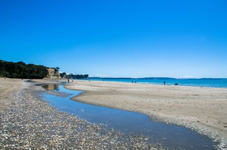 long bay: Long Bay Regional Park which is located at Auckland, New Zealand.