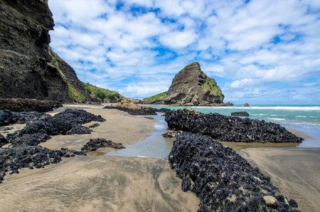 Piha Strand Der An Der Westkuste In Auckland Neuseeland Befindet Lizenzfreie Fotos Bilder Und Stock Fotografie Image 64393364