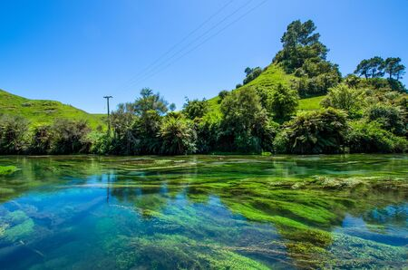 hamilton: Blue Spring which is located at Te Waihou Walkway,Hamilton New Zealand. It internationally acclaimed supplies around 70 of New Zealands bottled water because of the pure water.