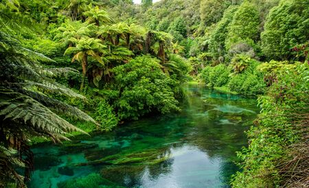 internationally: Blue Spring which is located at Te Waihou Walkway,Hamilton New Zealand. It internationally acclaimed supplies around 70 of New Zealands bottled water because of the pure water.