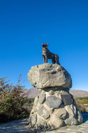 mackenzie: Lake Tekapo,New Zealand - April 19,2016 : Collie dog monument was erected by the runholders of the Mackenzie country and those who also appreciate the value of it, Lake Tekapo, New Zealand