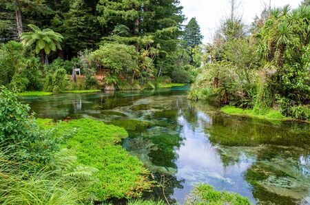 Hamurana Springs is the deepest natural fresh water spring on the North Island of New Zealand.
