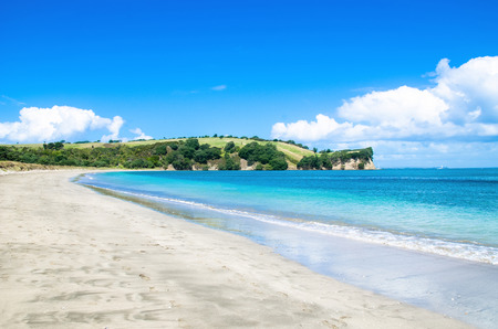 te: Te Haruhi Bay, Shakespear Park in New Zealand.