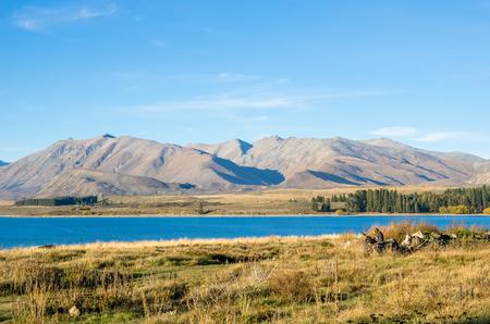 lakefront: Beautiful landscape Lake Tekapo in New Zealand Stock Photo