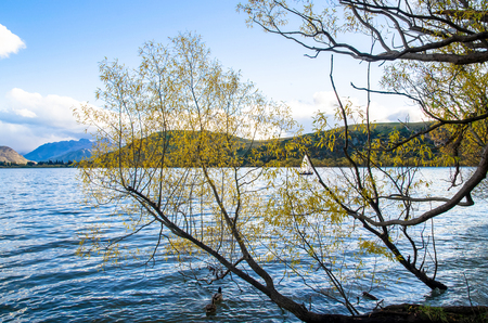 ヘイズ湖ワカティプ盆地セントラル ・ オタゴ、ニュージーランドの南の島にあります。