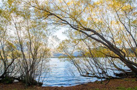 ヘイズ湖の湖畔、ニュージーランドのサウスアイランド、セントラルオタゴのワカティプ盆地に位置しています。 写真素材