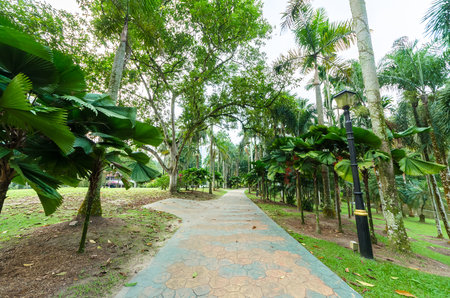 Lake Gardens also known as Kuala Lumpur Perdana Botanical Gardens, it is KL's first large-scale recreational park.
