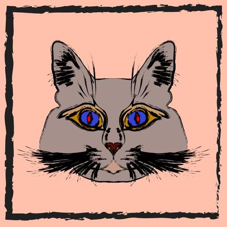 gray cat: Cute gray cat. Muzzle cartoon cat in a box