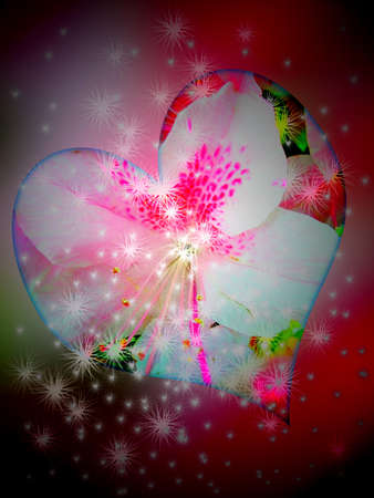 Heart, flower, star photo