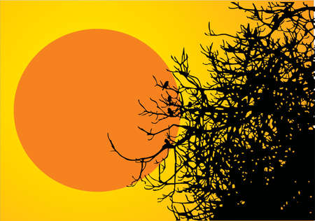 Tree with birds with red sun background Stock Vector - 10066411