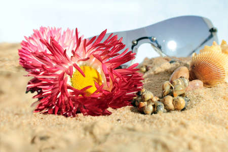 sun bathers: Beach, shells, necklace, glasses, flowers Stock Photo