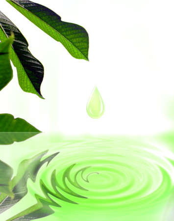 Droplet falling from green leaf