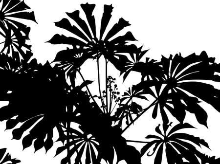 singular: Singular forms Sheets Illustration