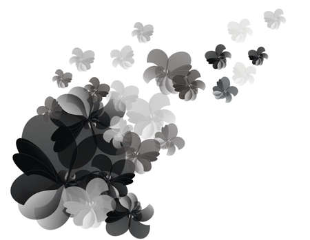 subtlety: flower background black, gray and white