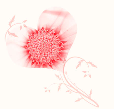 reloaded: beautiful flower heart pink background