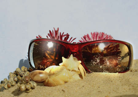 Fashion accessories and flowers in the sand of de beach Stock Photo - 18012453