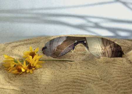 Sunglasses in the sand of the beach Stock Photo - 18012458