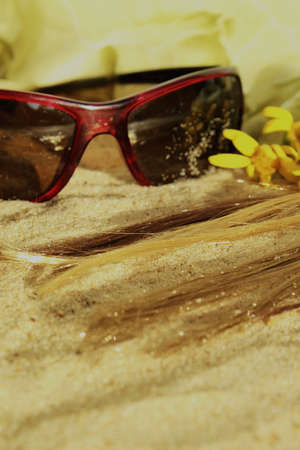 hair in the sand and eyeglasses Stock Photo - 18012457
