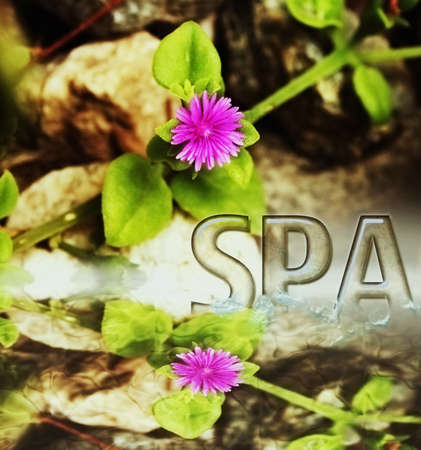 spa  Stock Photo - 20937525