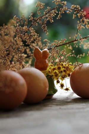 easter, eggs, rabbit, photo