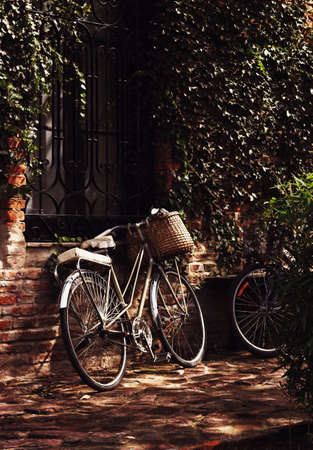 Antique Bicycle photo