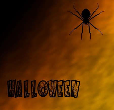 Spider on Halloween night Stock Photo