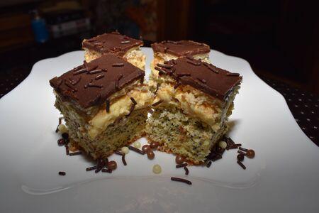 Cake with poppy and vanilla cream (Tosca) 版權商用圖片