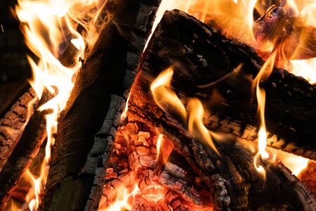 Closeup of wooden logs being burnt in the fire Banque d'images