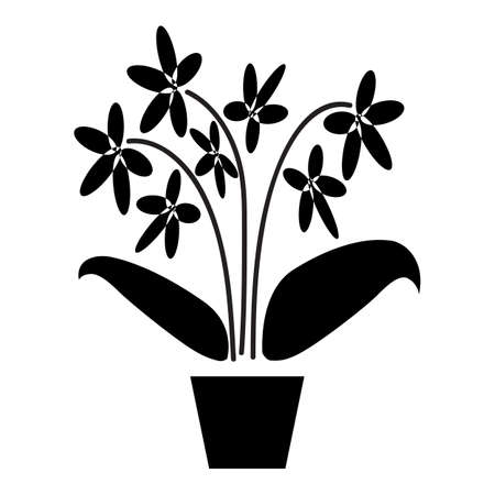 Orchid. Potted plants silhouette isolated on white background. Vettoriali