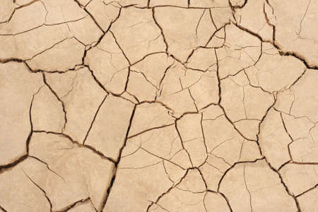 scarcity: Drought