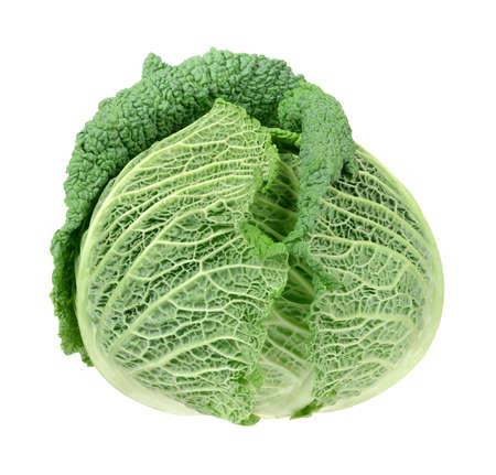savoy: Fresh savoy cabbage head